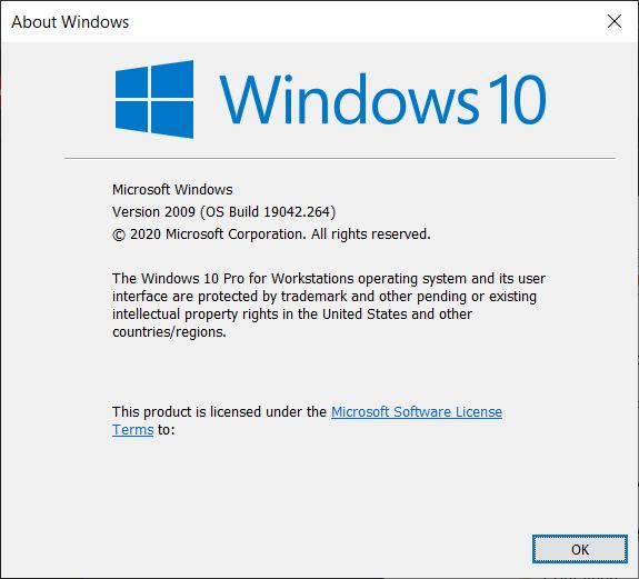 Windows 10 Version 2009 20H2 Winver