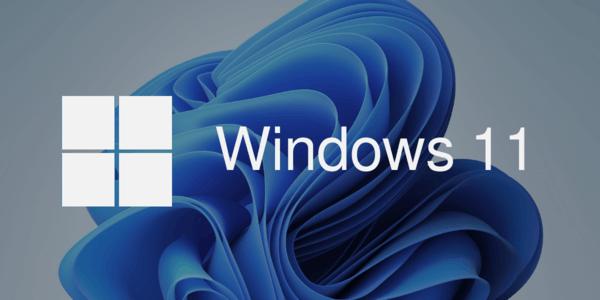 Windows 11 Banner 2