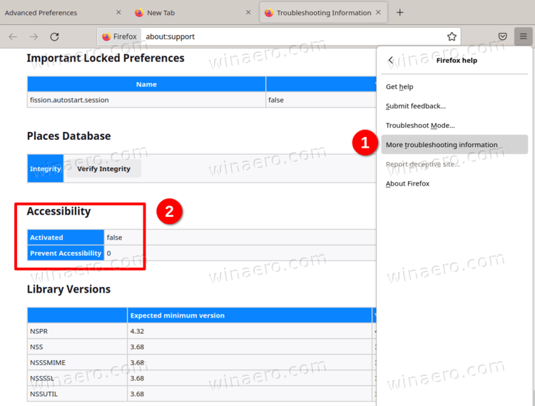 Firefox Accessibility Service Status