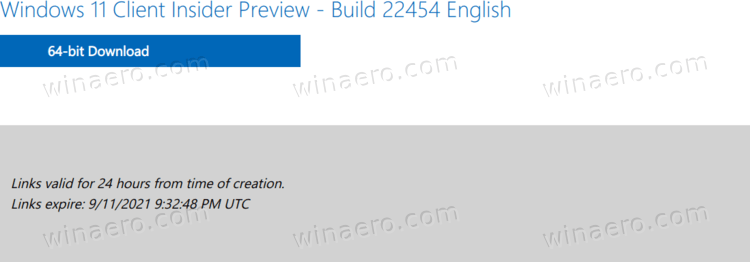 Download Button For Windows 11 Build 22454 ISO File