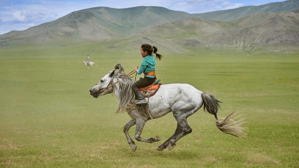 Microsoft Translator Mongolian