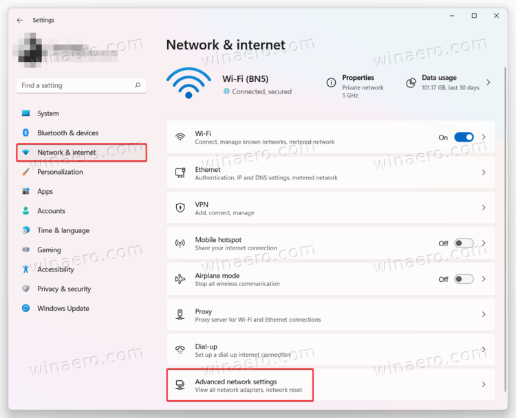 Advanced Network Settings Item In Settings